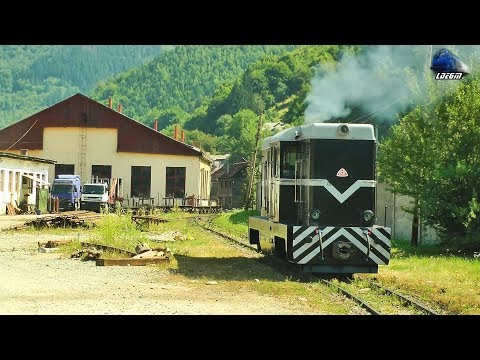Video: L35H 024 diesel locomotive shunting in Viseu de Sus railway station